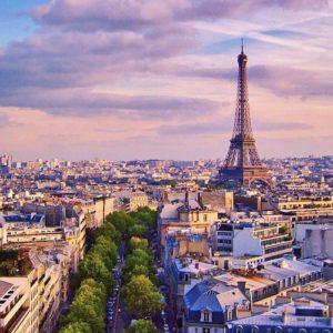 LSI Fransa