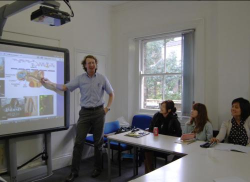 Hampstead school interactivewhiteboard1