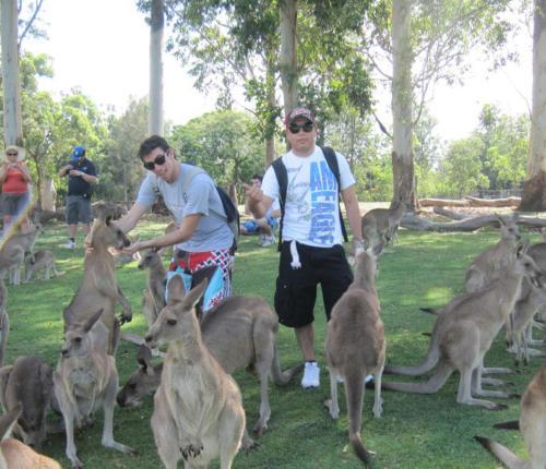 LSI Brisbane Activities A3